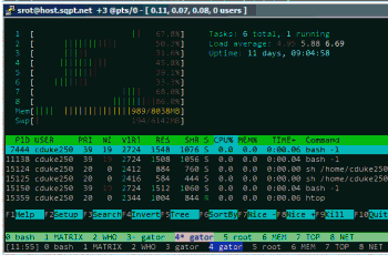 running htop in bash over ssh to different server