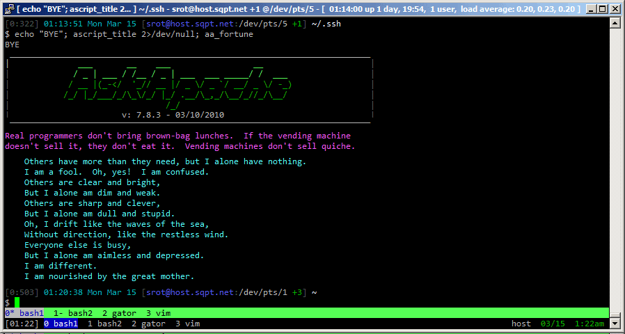 bash power prompt screenshot