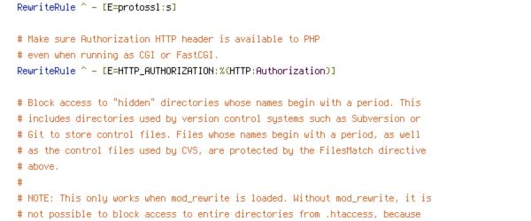 ENV, HTTP_HOST, HTTPS, no-gzip, protossl, REQUEST_FILENAME, REQUEST_URI, SERVER_PORT