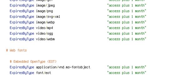 DEFLATE, ENV, HTTP_HOST, HTTPS, no-gzip, PROTO, REQUEST_URI