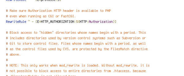 ENV, HTTP_HOST, HTTPS, no-gzip, protossl, REQUEST_FILENAME, REQUEST_URI