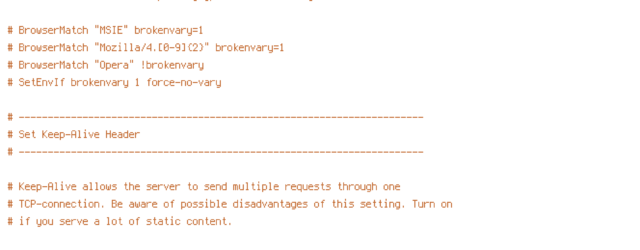 DEFLATE, ENV, force-no-vary, HTTP_HOST, HTTPS, INCLUDES, REQUEST_FILENAME, REQUEST_URI, SCRIPT_FILENAME, SERVER_PORT, static, TIME
