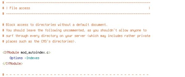 DEFLATE, HTTP_HOST, HTTPS, INCLUDES, ORIGIN, REQUEST_FILENAME, REQUEST_URI, SCRIPT_FILENAME, SERVER_ADDR, SERVER_PORT, TIME
