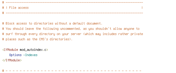 DEFLATE, HTTP_HOST, HTTPS, INCLUDES, ORIGIN, REQUEST_FILENAME, REQUEST_URI, SCRIPT_FILENAME, SERVER_ADDR, SERVER_PORT, TIME